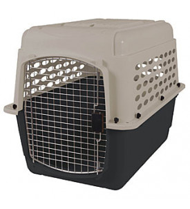 Traditionnelle Kennel