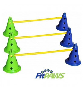 FitPaws Canine Gym kit