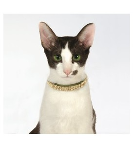 Collier chat Cristal Princesse