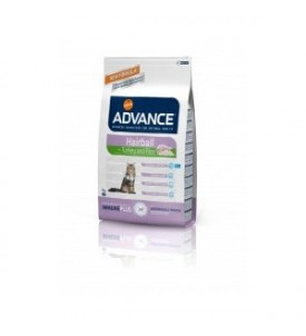Advance chat adulte Hairball