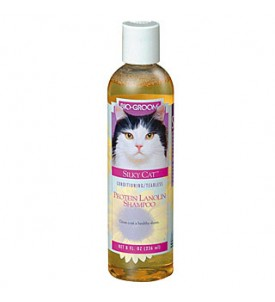 Shampooing Silky Cat